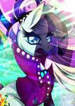 Countess Coloratura - Her way of success