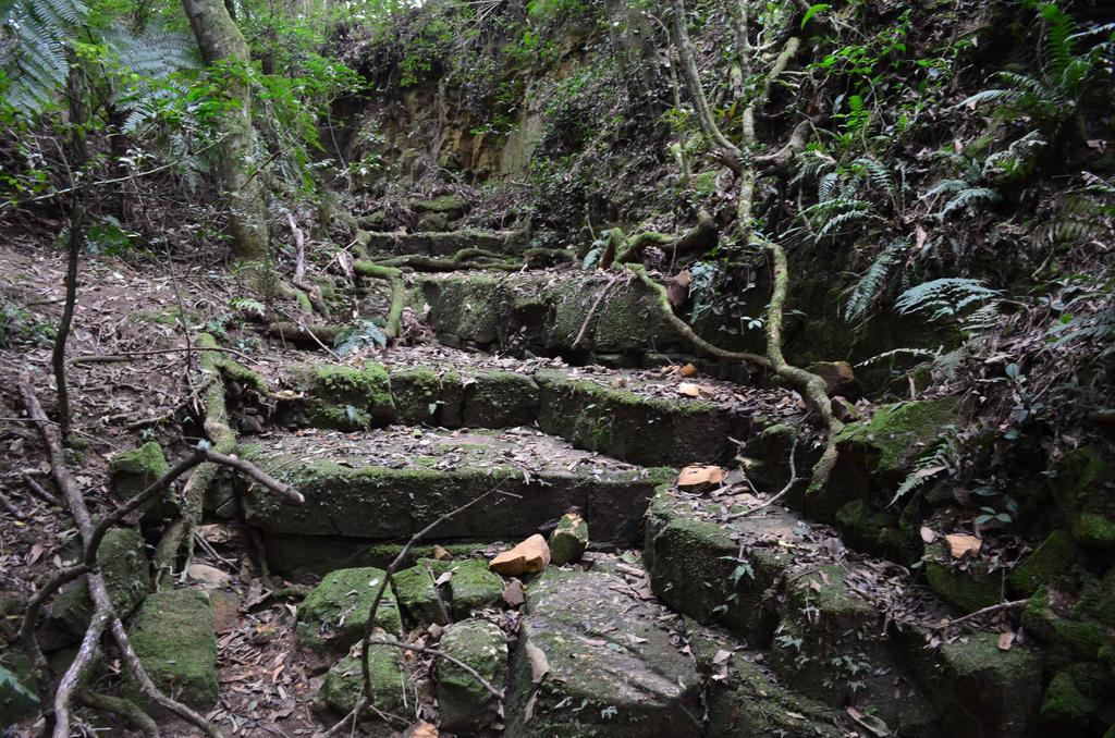 Steps by X-Alex