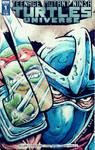 TMNT: Shredder - sketch cover variant by donovanalex