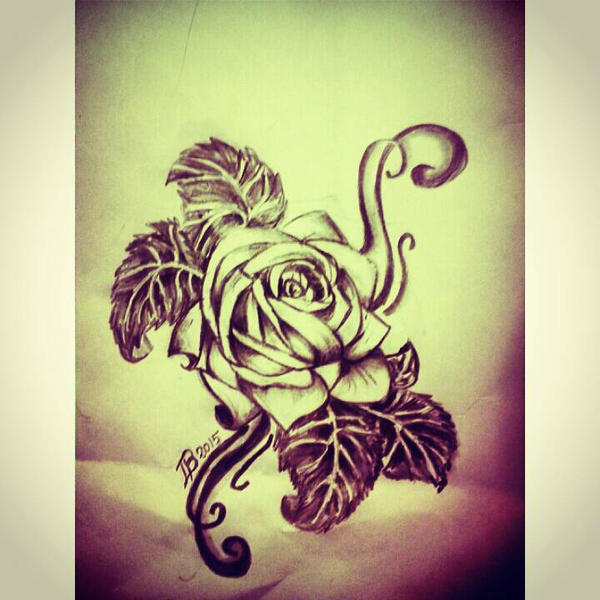 Rose art.  by Baronart