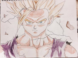 Son of Goku by totalserenity1