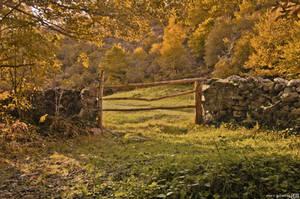 Rural autumn. by MarioGuti