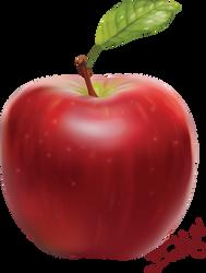 Apple (full in vectors) by Bestary