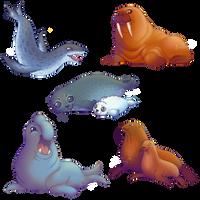 #2 Pinnipeds