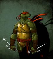 Raphael by Noil-1