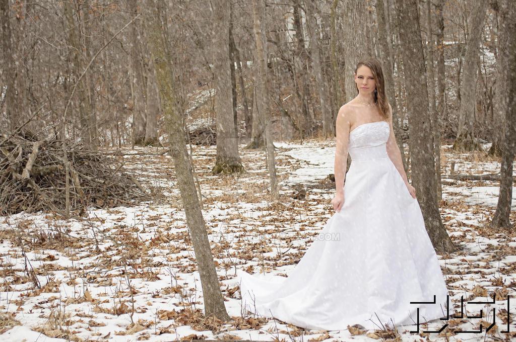Snowy Wedding by artangel85