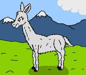 Cute llama by Maleiva