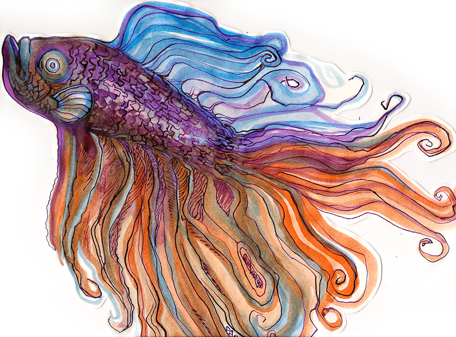 Fancy fish by evil goma on deviantart for The fancy fish