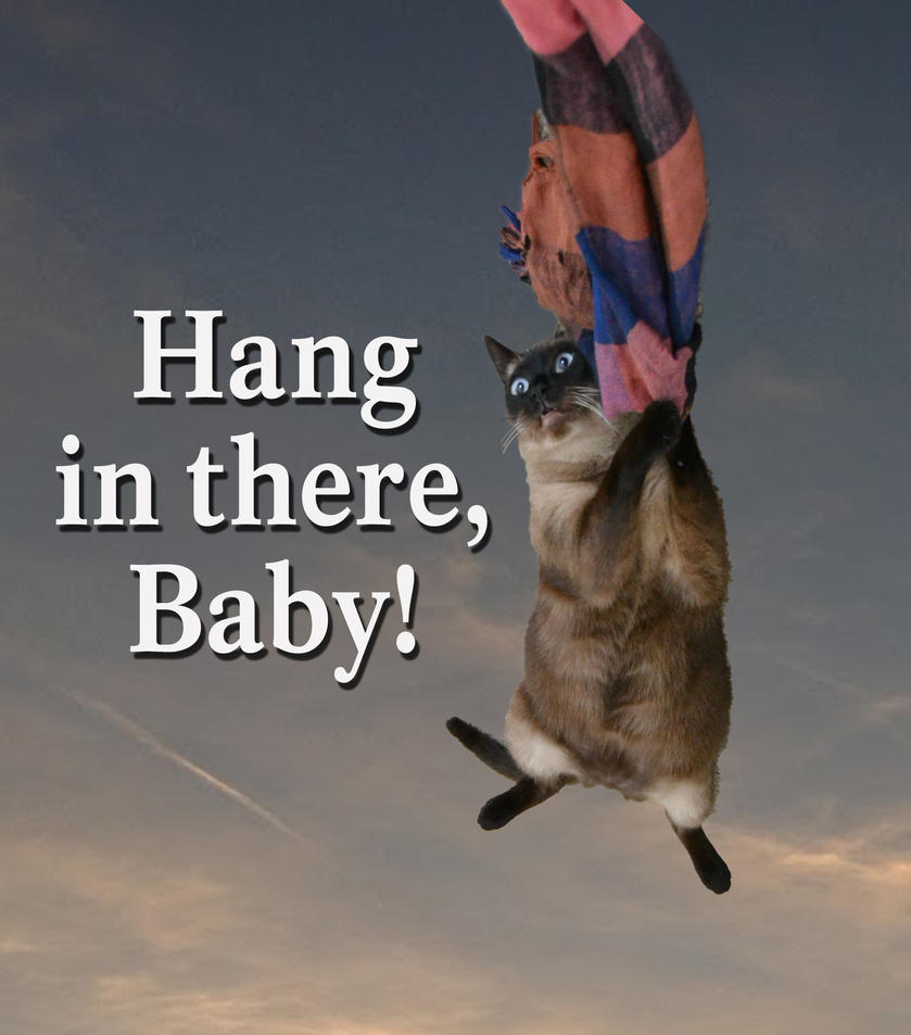 Hang in there baby by bytor on deviantart