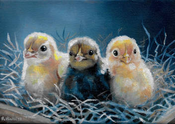 Three Baby Chicks by TernFeather