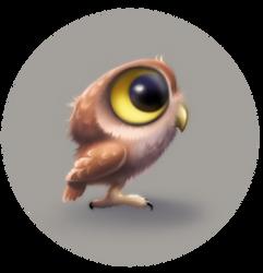 Little owl by Tai-atari