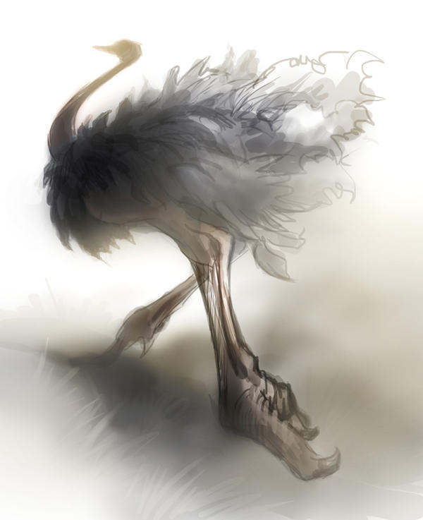 Ostrich by Tai-atari