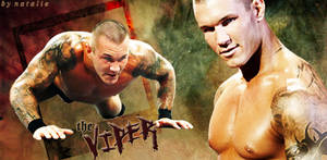The Viper :: Randy Orton by Y2Natalie