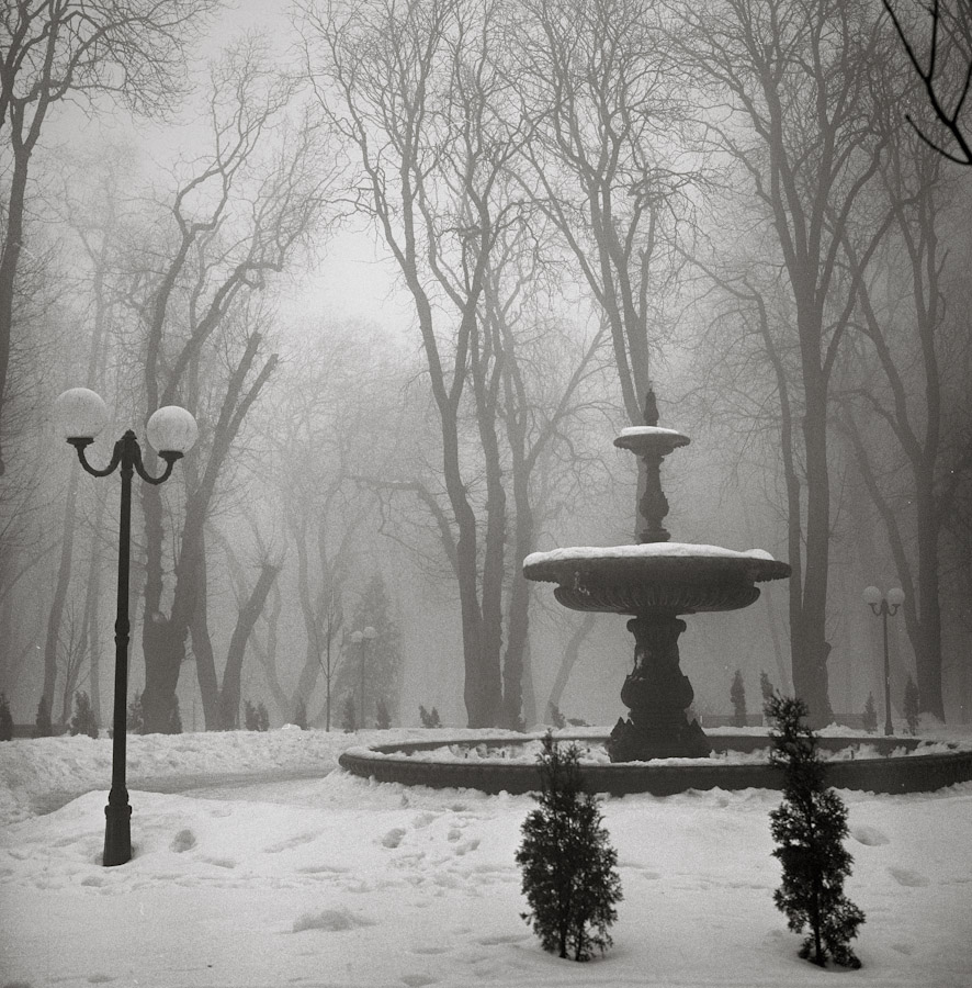 Empty winter park by sonar-ua