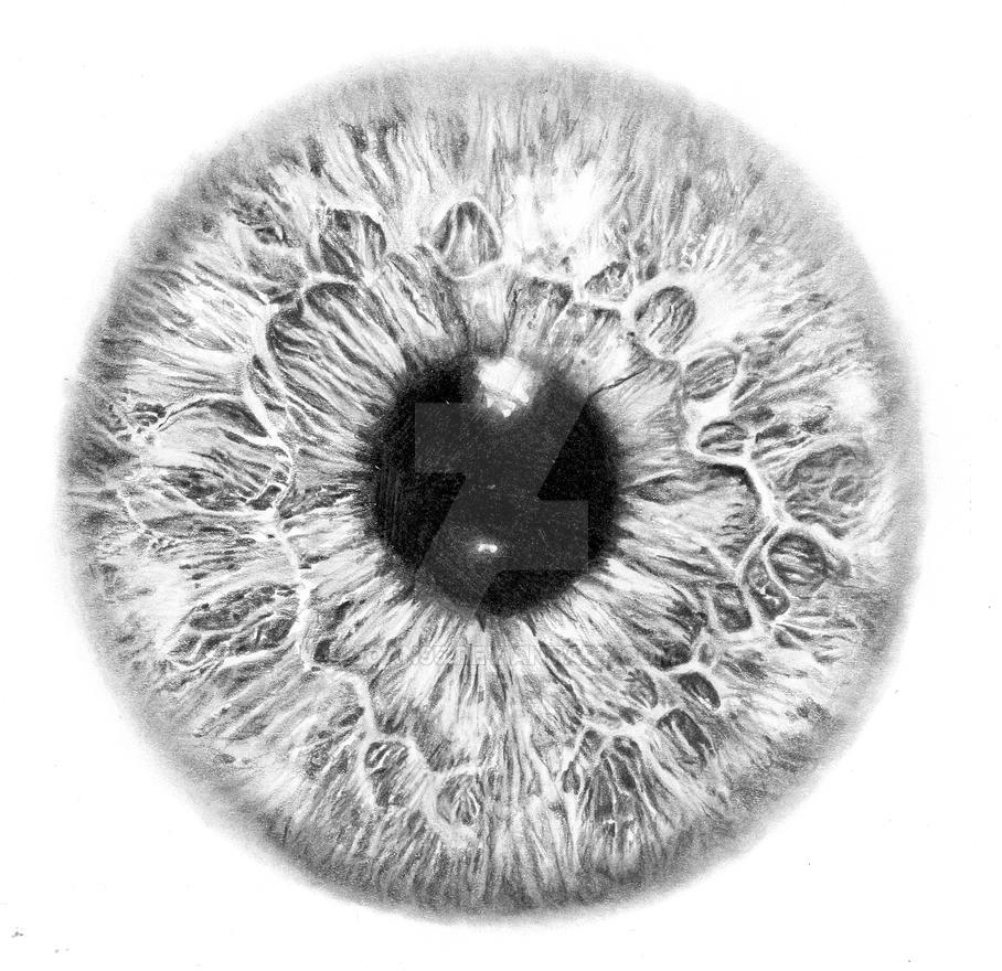 Iris eye by Joan95