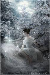 Mid-Winter's Night by Iardacil