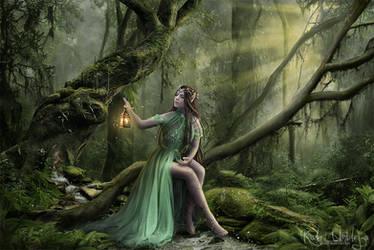 Forest Spirit by Iardacil