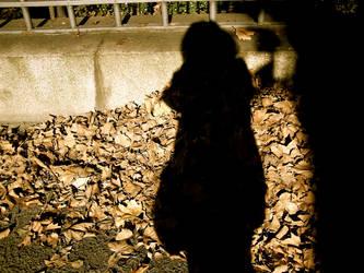 Shadow. by KatWaldorf
