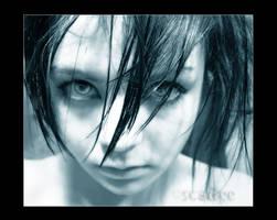 PortraitOfMyInterspersedHeart by Scadee
