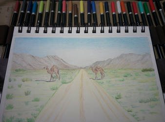Camel Crossing by bezzlebez