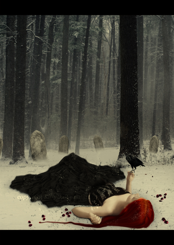 Snow and Blood by KittyD
