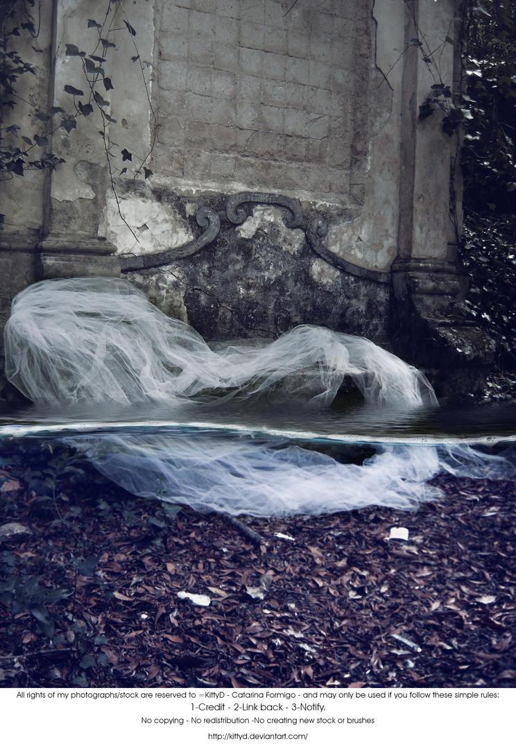 Underwater by KittyD