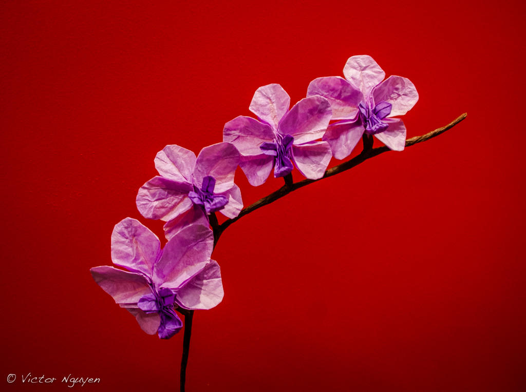 origami orchids by origamichemist on deviantart