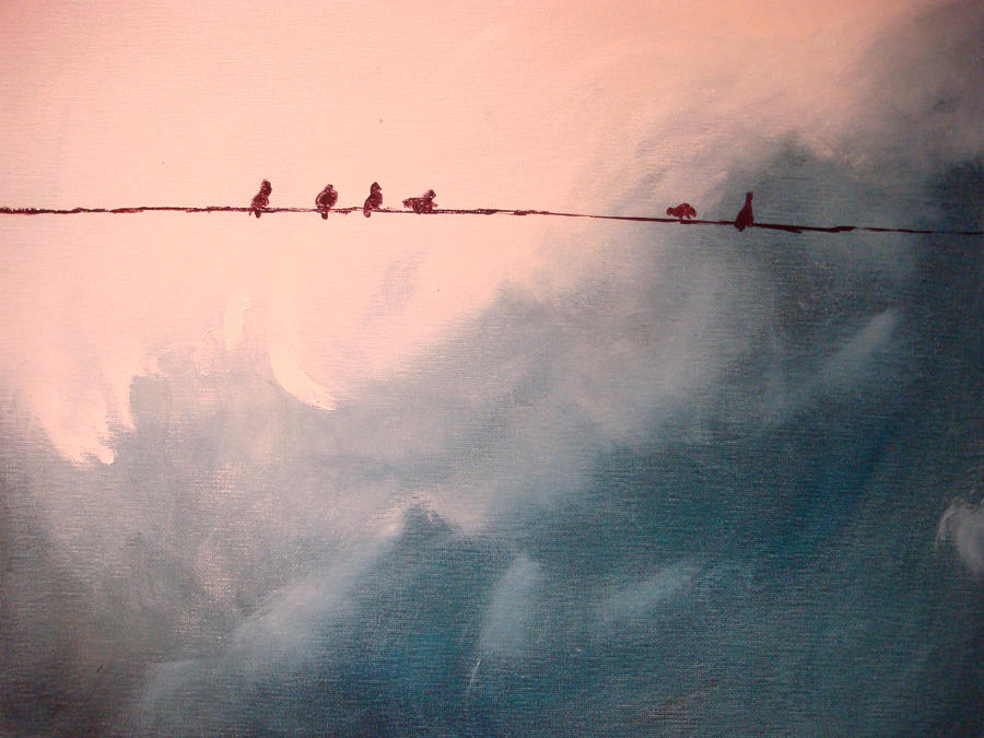 birds watching a storm by musicophilia