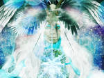Winged Paradox