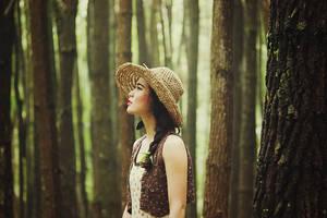The Wanderer by januarain
