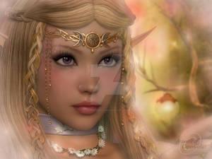 The Eyes of a Fairy