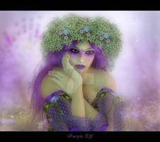 PURPLE FAE IN DEEP THOUGHT