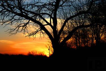 Setting Sun by TJs-Photographs