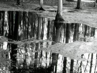 world in the water 2 by kurdt-me