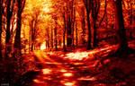Forever Autumn 2.
