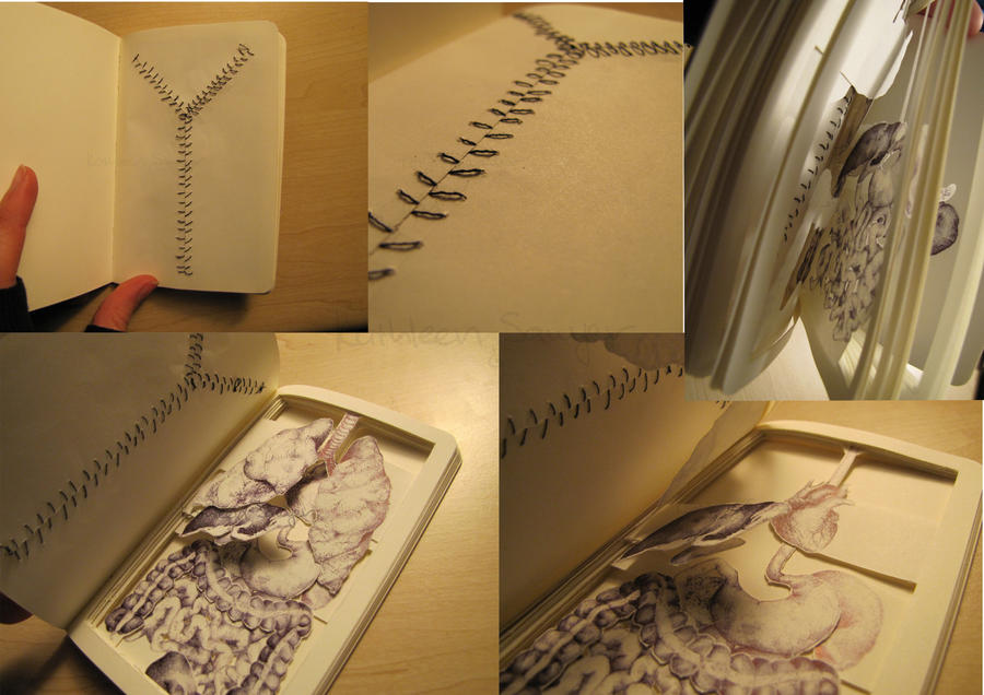 Book Autopsy by KatSaw