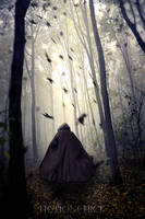 She Walks Alone by FictionChick