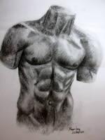 human torso by Mumuchi