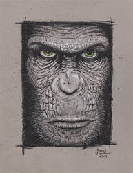 Caesar from Rise of the Planet of the Apes by AtlantaJones