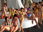 Dead or Alive 5 - sexy group Photo