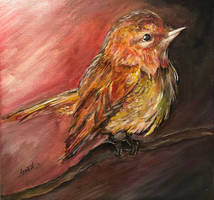 Waiting For The Dawn by Sara-Arasteh