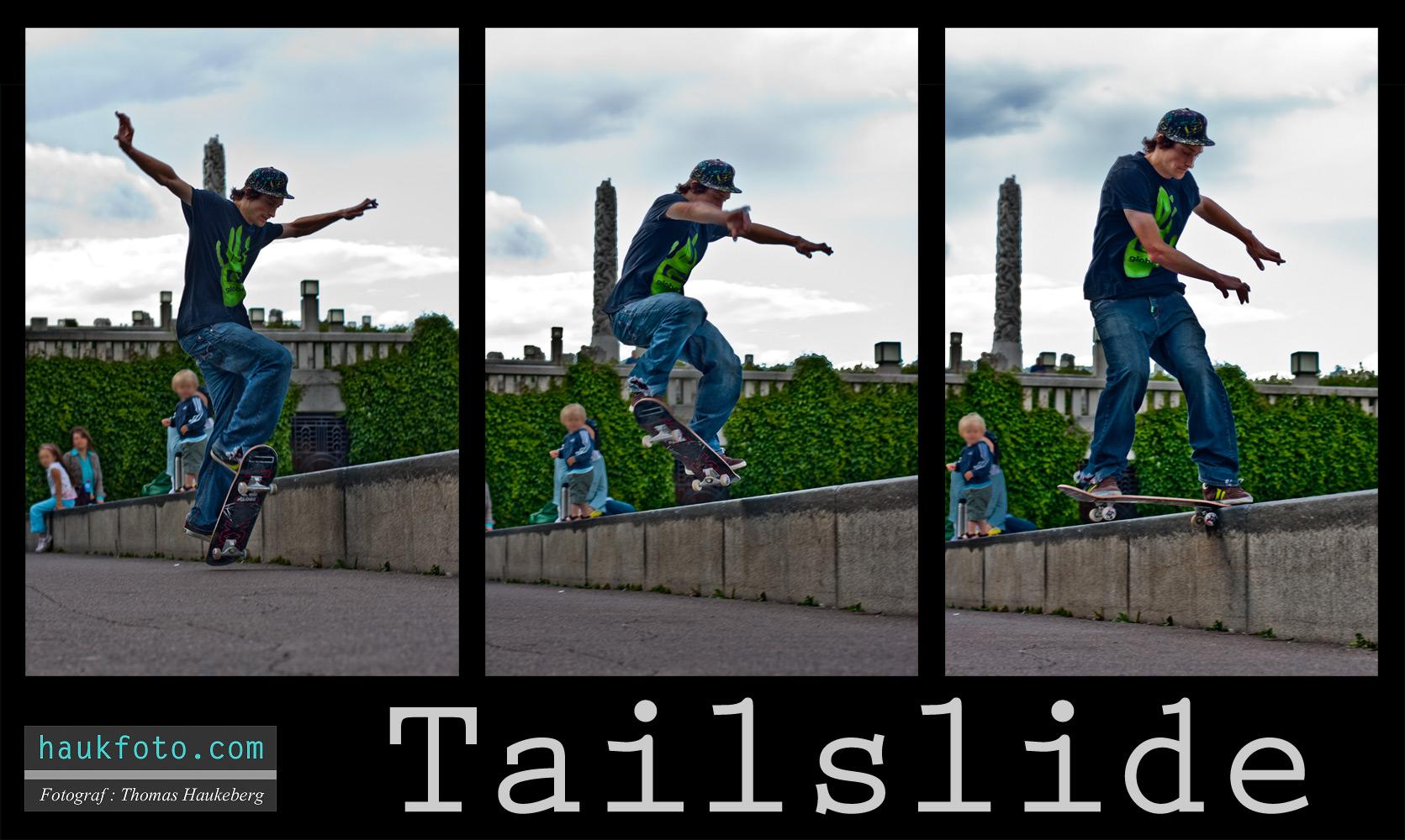 Atle Hansen Tailsliding in Frognerparken by OrisTheDog