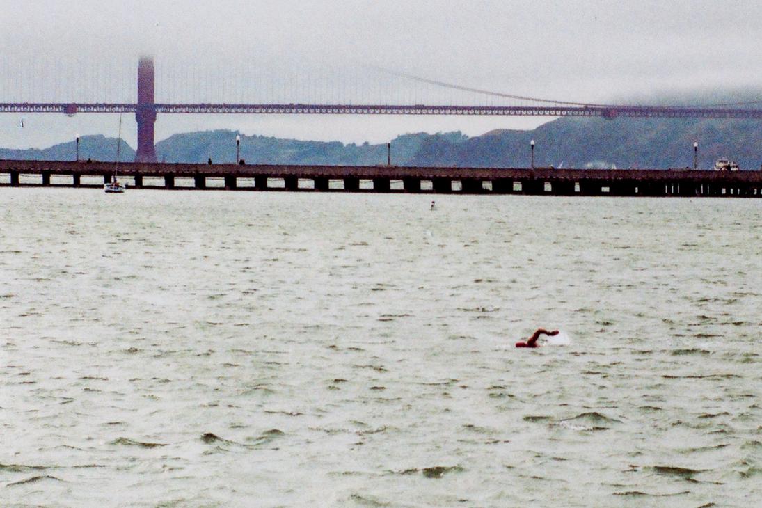 San Francisco Bay Swimmer by OrisTheDog