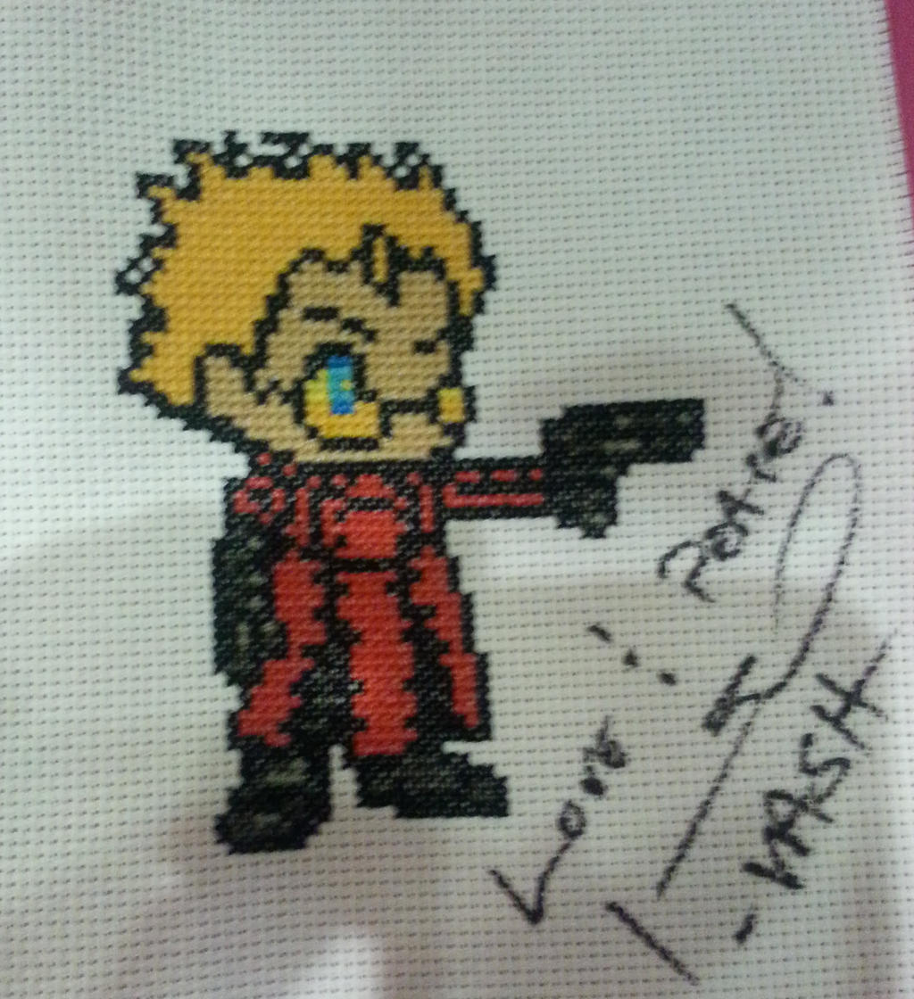 Vash the Stampede Signed by Sew-Madd