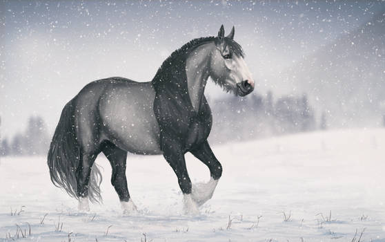Horse in winter by Yanmi