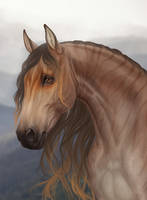 Horse by Yanmi