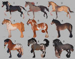 Auction horse adopt 60 [CLOSED]