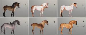 Auction horse adopt 67 [CLOSED]