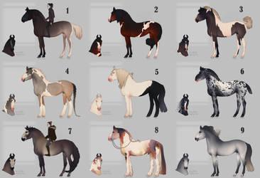 Auction horse adopt 73 [CLOSED]