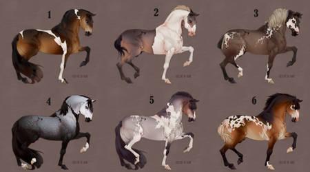 Auction horse adopt 75 [CLOSED]